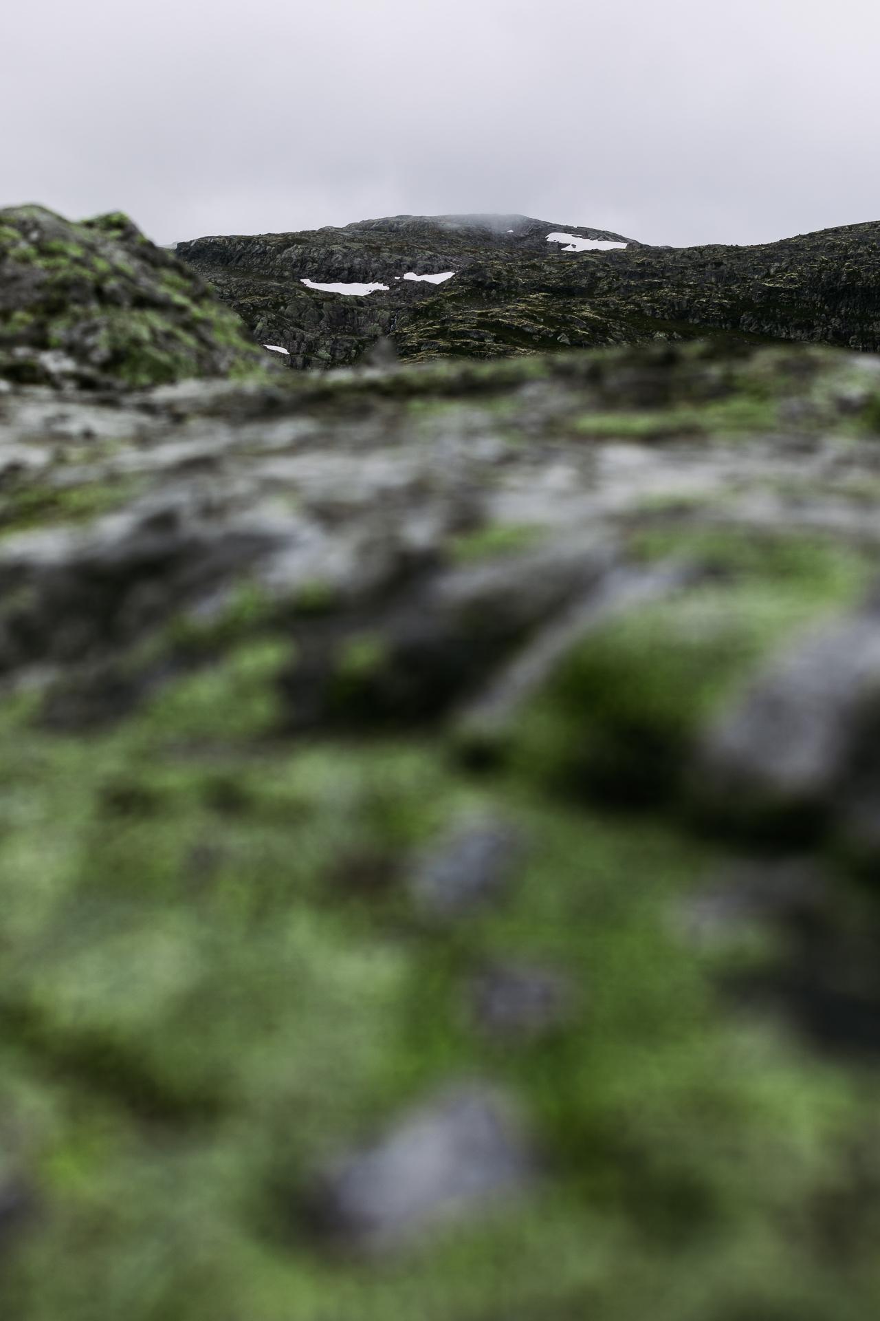 20190813_1537_Norwegen_0000000558