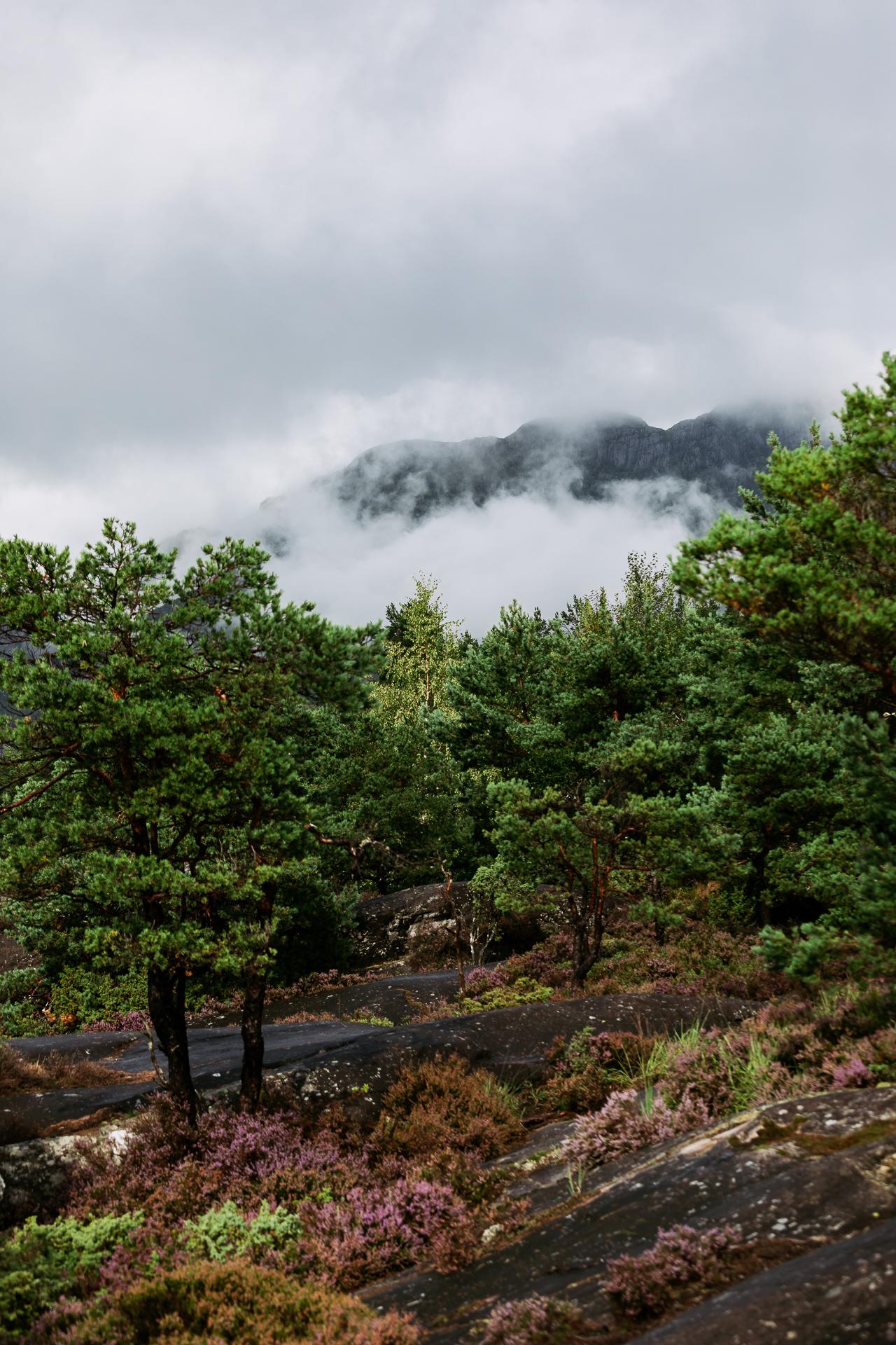 20190822_1538_Norwegen_0000001297